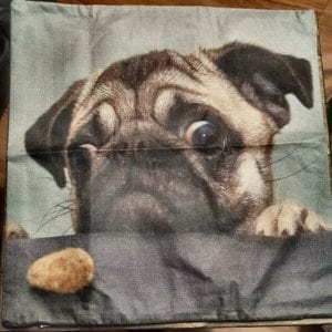 Pillow Case – Biscuit Pug