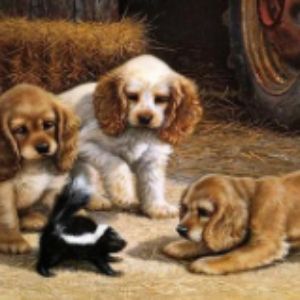 PUPPYS PAINT BY NUMBERS