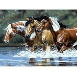 HORSES PAINT BY NUMBERS
